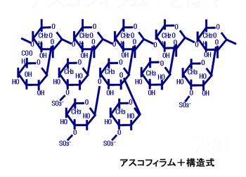 fucoxanthin-7